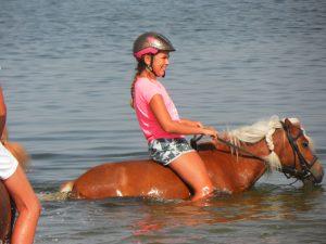 Ponyrijden bij zee midicamping